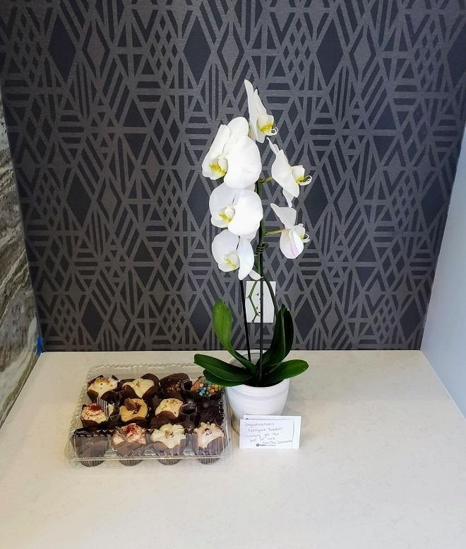 A gift of cupcakes and a beautiful white orchid plant from dentist in Urbandale and Johnston Iowa